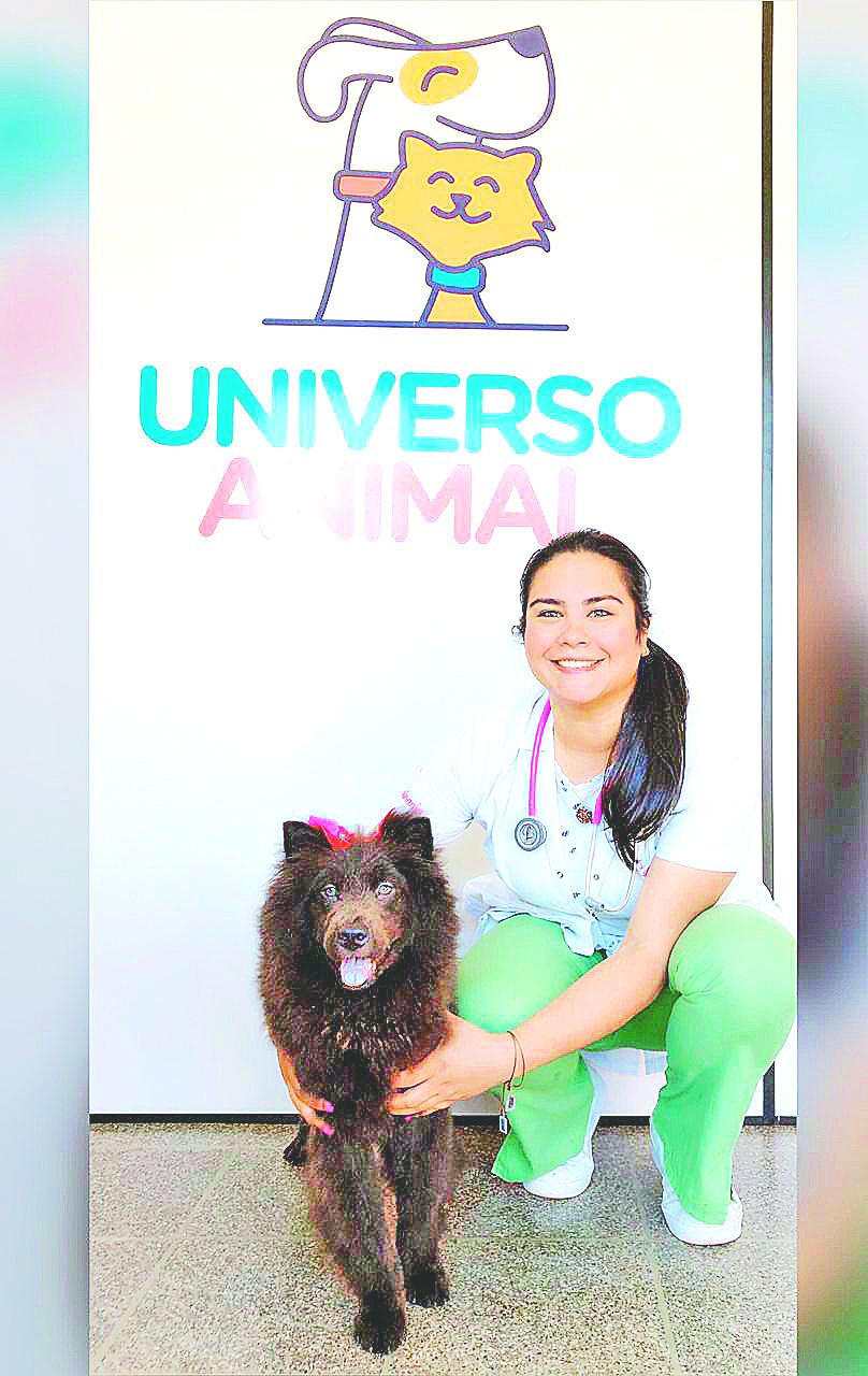 UNIVERSO ANIMAL: PROFESIONALES AL CUIDADO DE LAS MASCOTAS